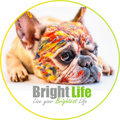 Bright Life - Equity Release and Mortgages